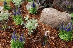 Gravel, Mulch, Stepping Stones, Rock (10)